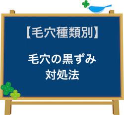 毛穴の黒ずみ対処法.jpg