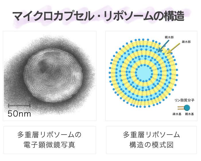 liposome_01_image01_large.jpg